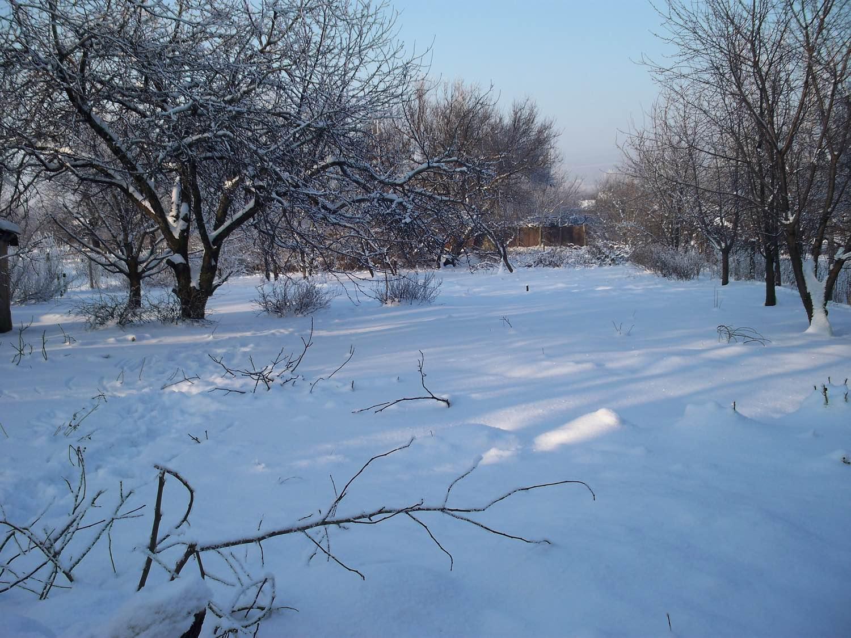 январь сад