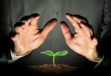 Перевірити насіння на схожість
