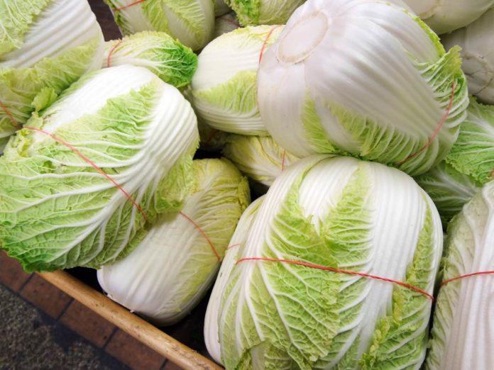 Тонкости выращивания пекинской капусты