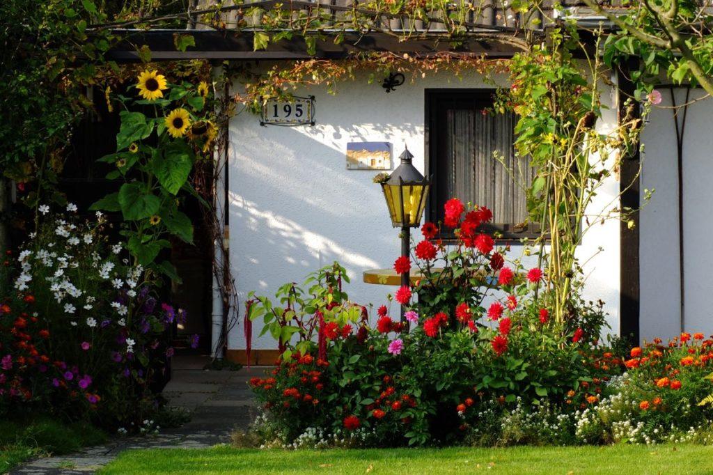 Календарь садовода: август