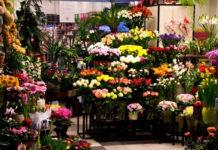Цветочница Лида