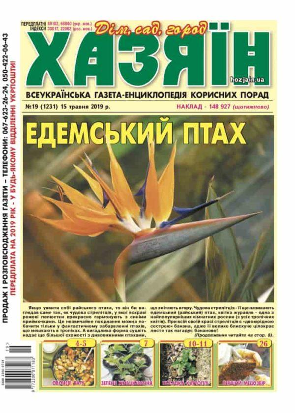 """Хазяїн"" №19/2019"