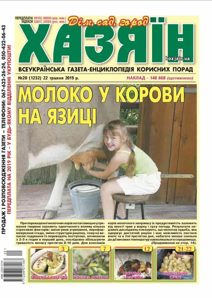 """Хазяїн"" №20/2019"