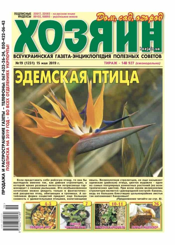 """Хозяин"" №19/2019"