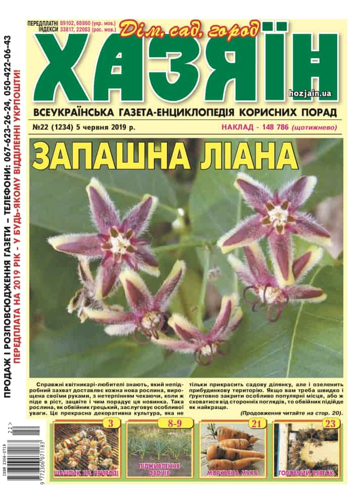 """Хазяїн"" №22/2019"