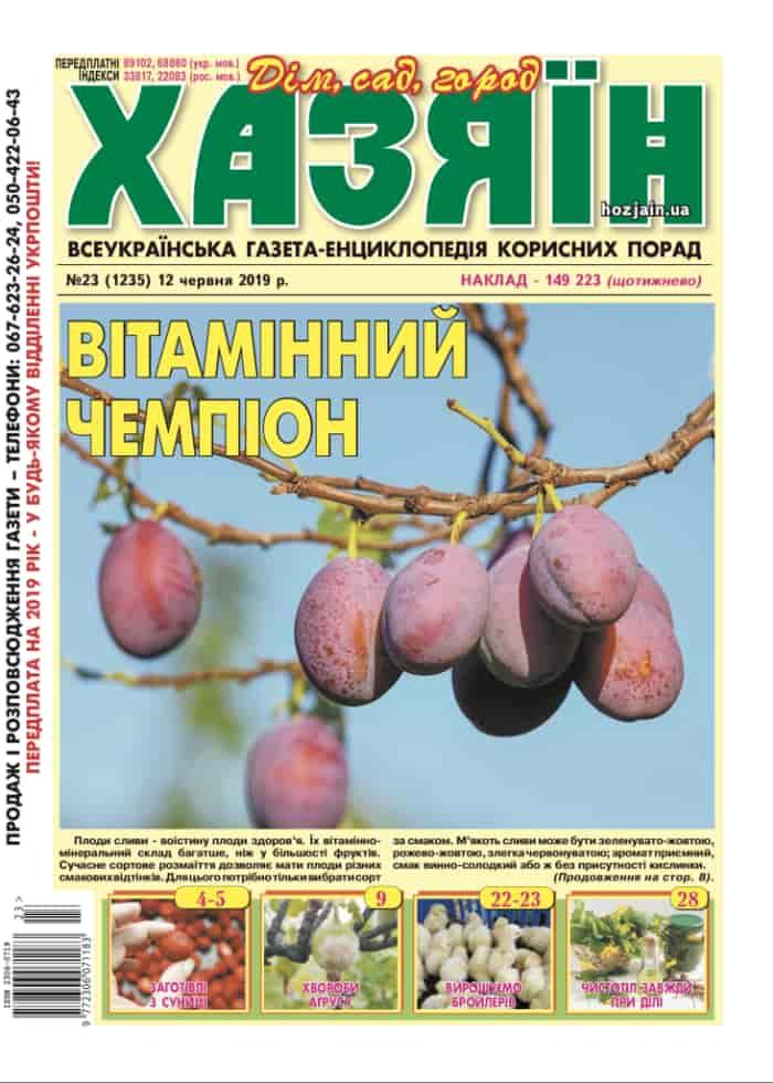 """Хазяїн"" №23/2019"