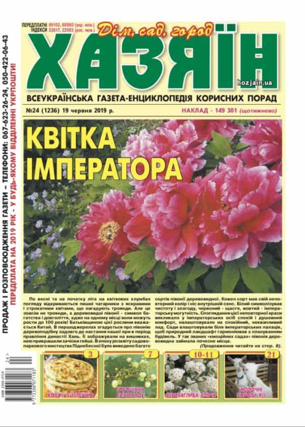 """Хазяїн"" №24/2019"