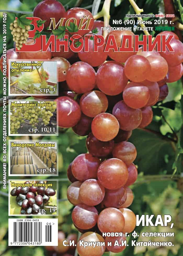 """Мой виноградник"" №6/2019"