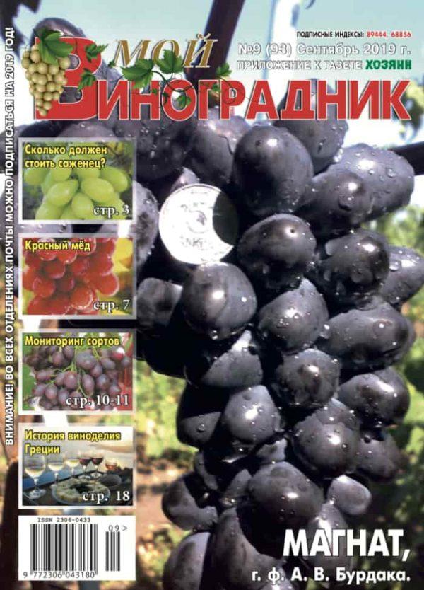 Мой виноградник, сентябрь 2019