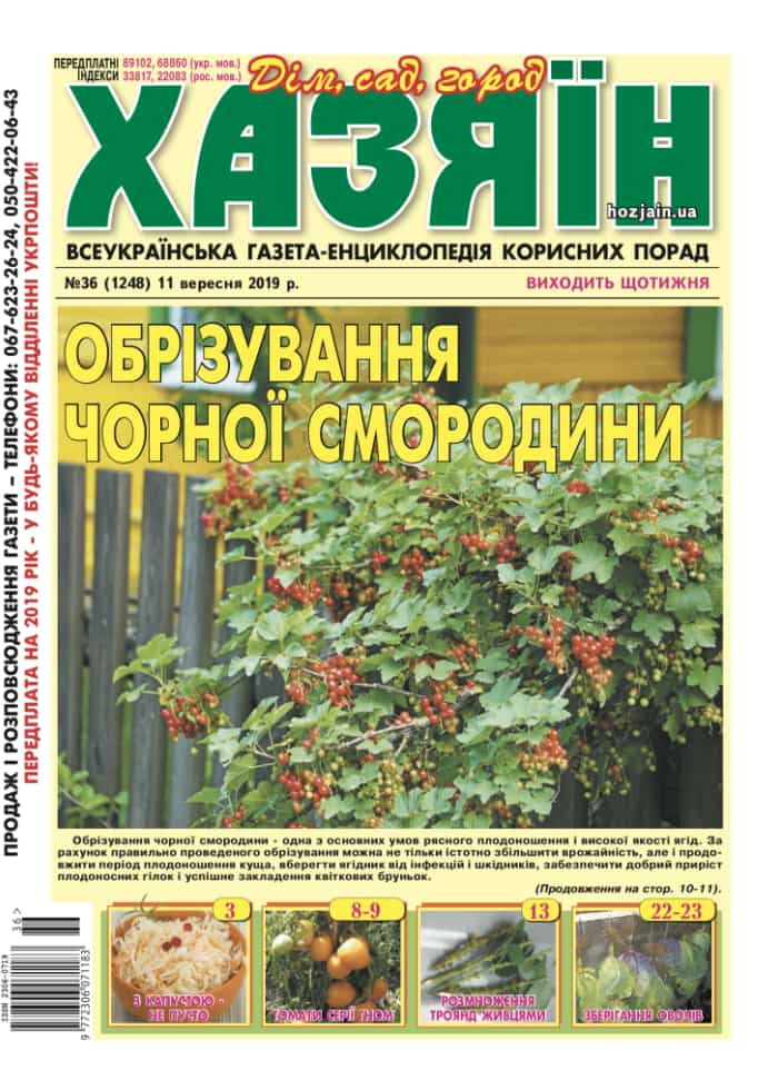 """Хазяїн"" №36/2019"