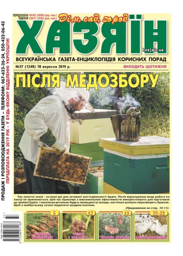 """Хазяїн"" №37/2019"