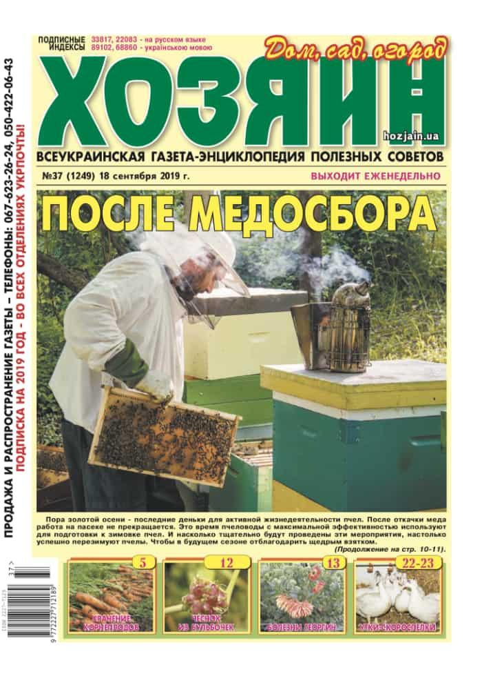 """Хозяин"" №37/2019"