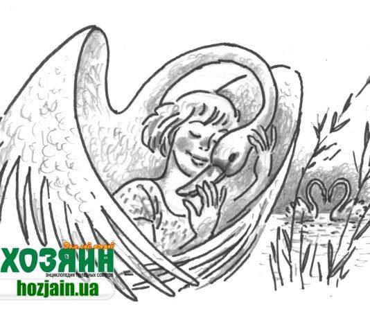 Рисунок Виктора Савилова