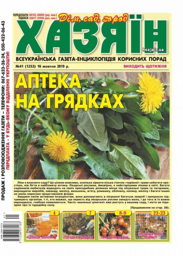 """Хазяїн"" №41/2019"