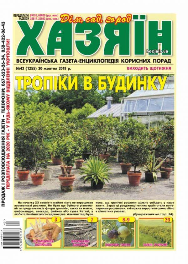 """Хазяїн"" №43/2019"