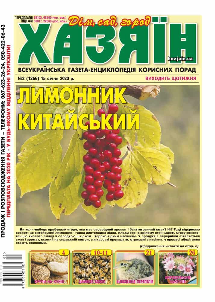 """Хазяїн"" №2/2020"