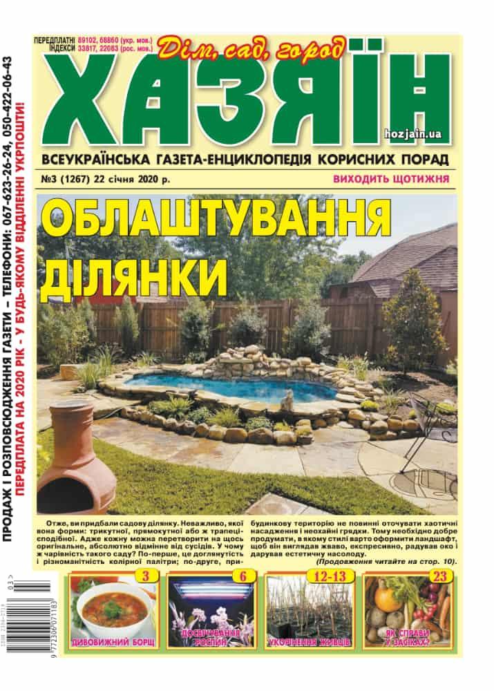 """Хазяїн"" №3/2020"