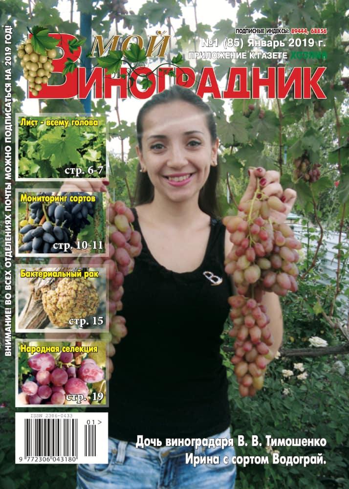Мой виноградник, ЯНВАРЬ 2019
