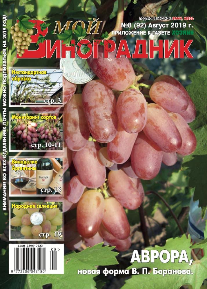 Мой виноградник, АВГУСТ 2019