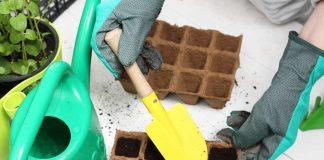 Секреты хорошего грунта при выращивании рассады