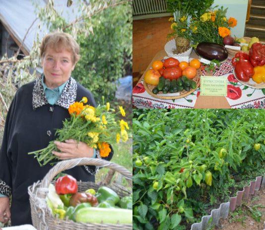 Ольга Анатольевна с урожаем перца