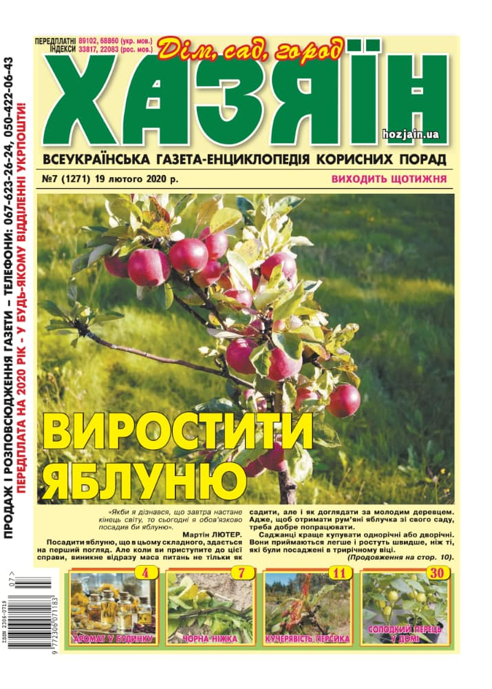 """Хазяїн"" №7/2020"