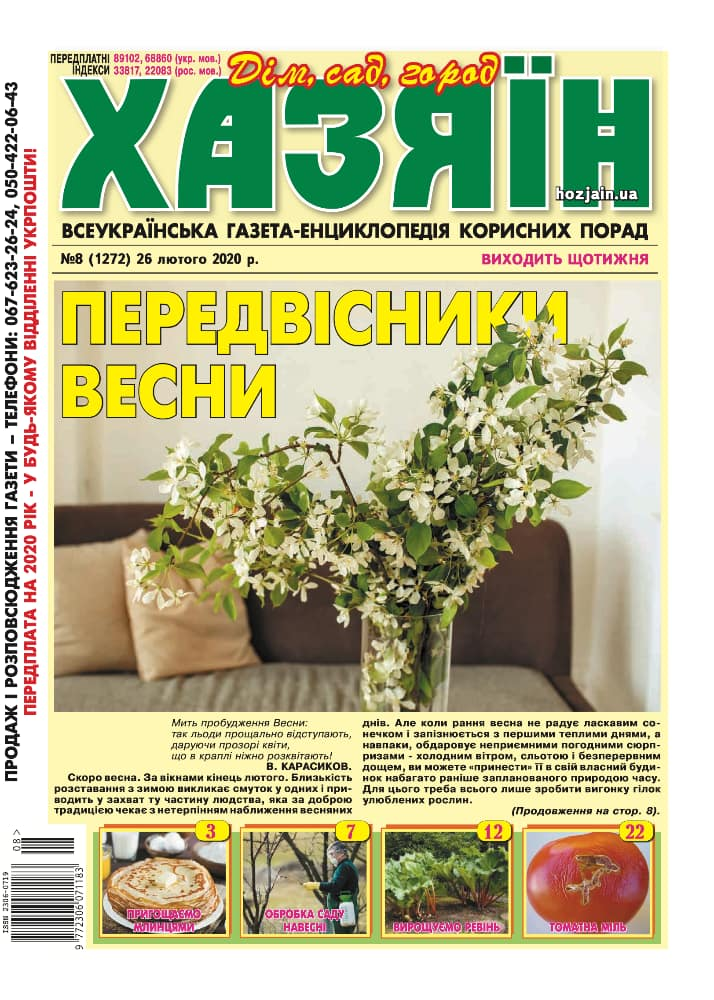 """Хазяїн"" №8/2020"
