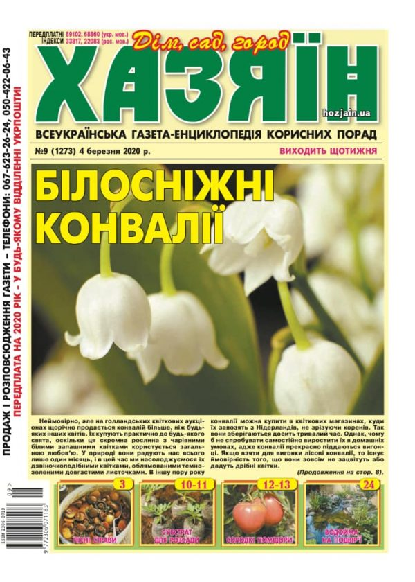 """Хазяїн"" №9/2020"