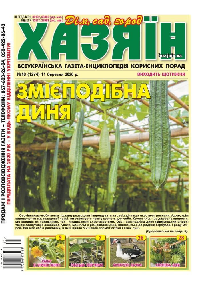 """Хазяїн"" №10/2020"