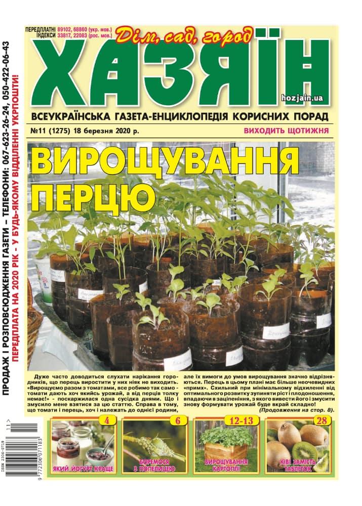 """Хазяїн"" №11/2020"