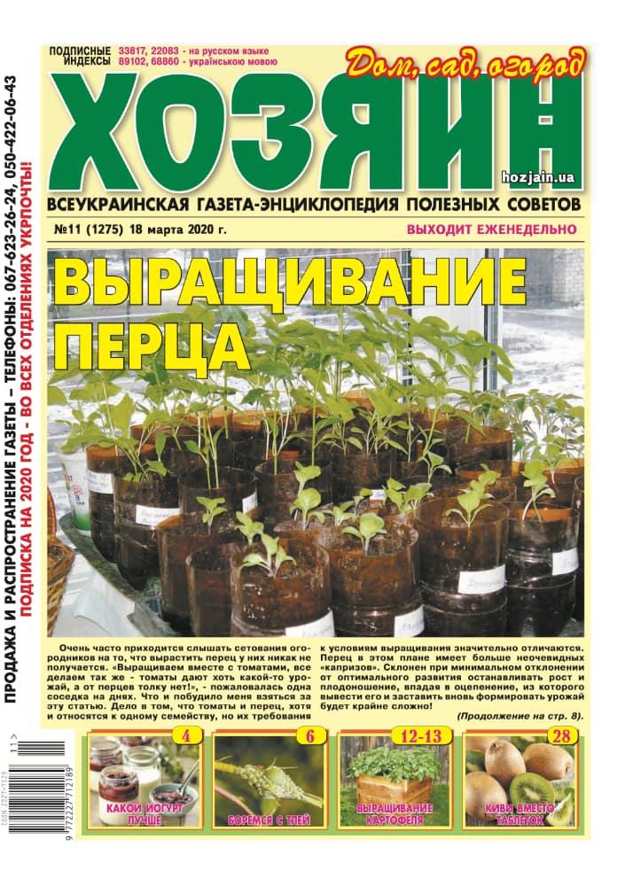 """Хозяин"" №11/2020"