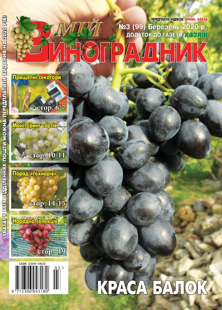 Мой виноградник, №3 2020