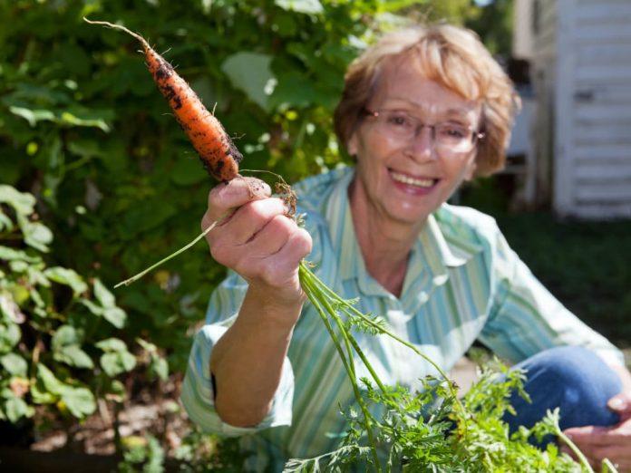 Советы садоводу-огороднику
