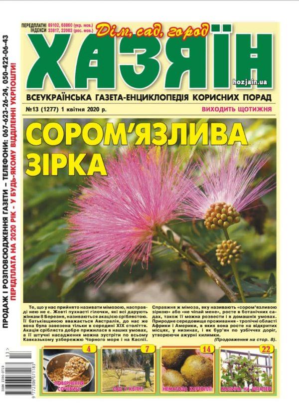 """Хозяин"" №13/2020"