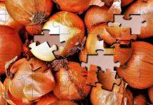 Белые червячки уничтожили урожай лука и моркови