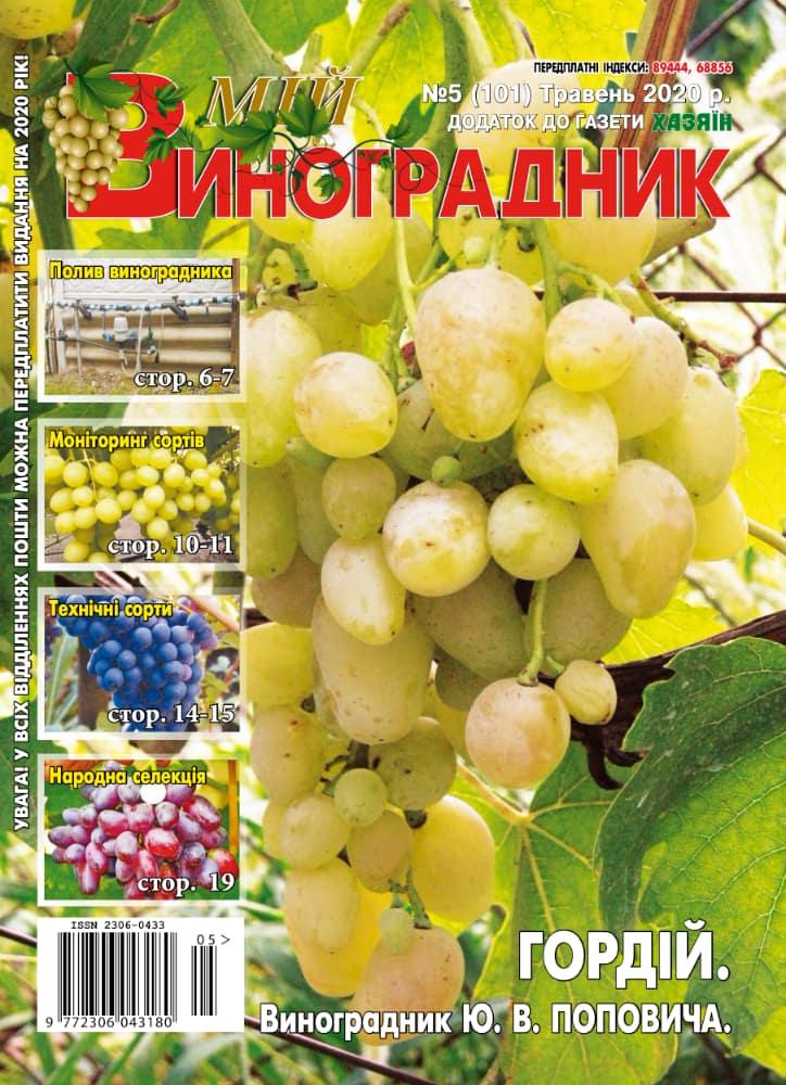 Мій виноградник