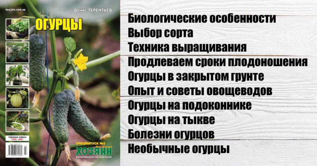 """Спецвыпуск """"Огурцы"""""""