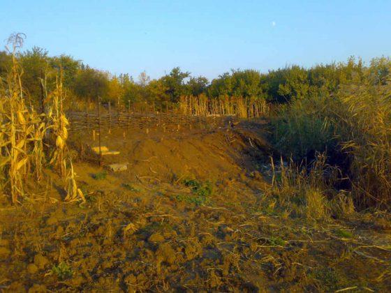 Бесценная земля Украины