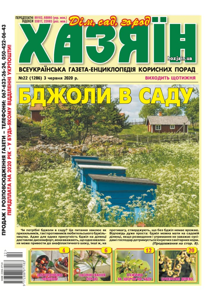 """Хазяїн"" №22/2020"