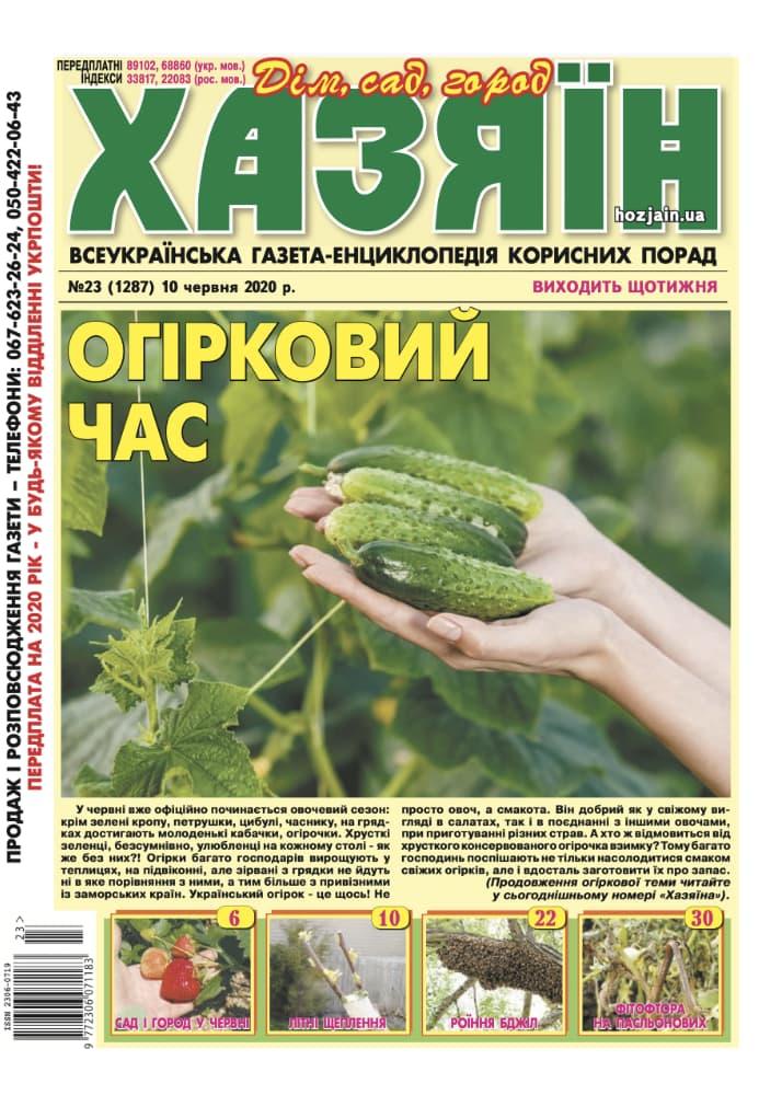 """Хазяїн"" №23/2020"