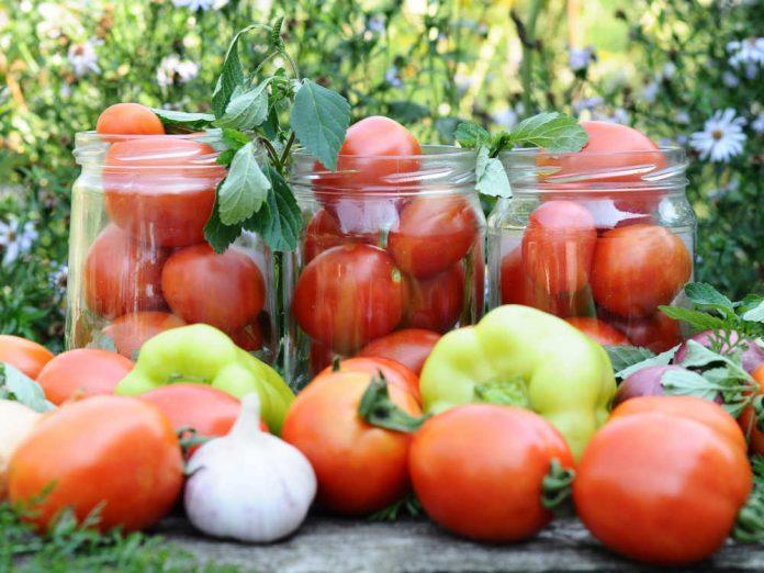Соління помідорів на всі смаки за кращими рецептами