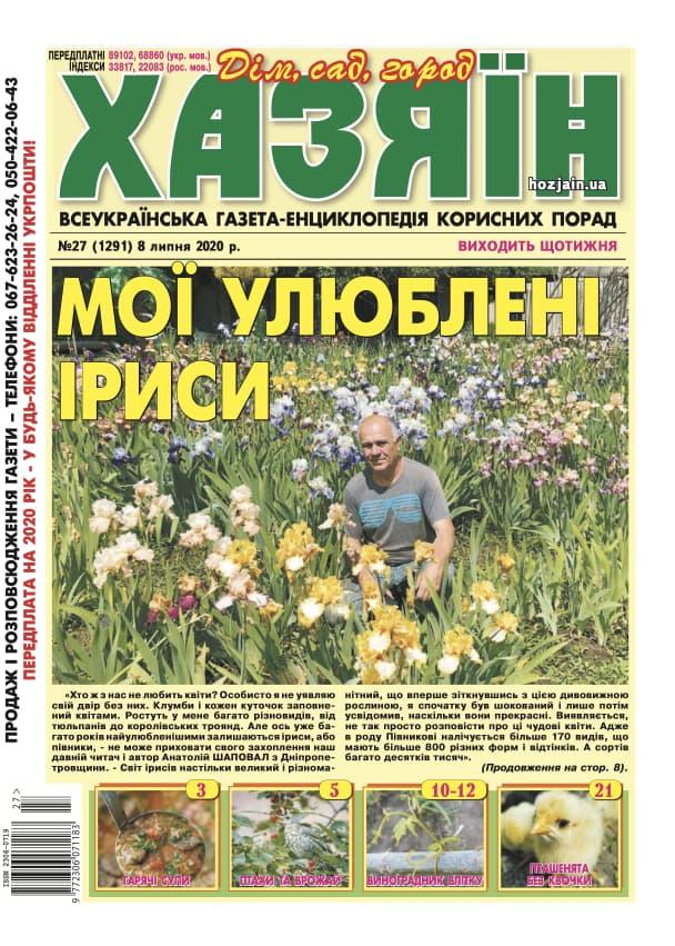 """Хозяин"" №27/2020"