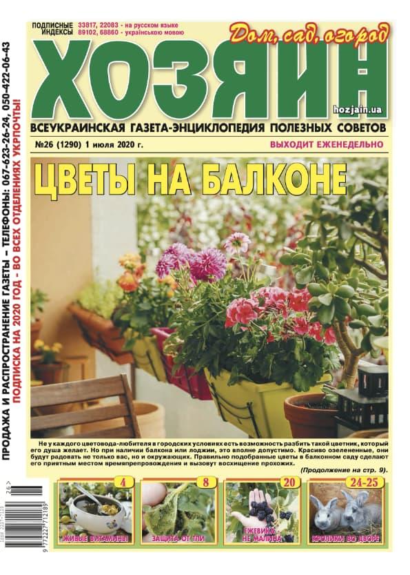 """Хозяин"" №26/2020"