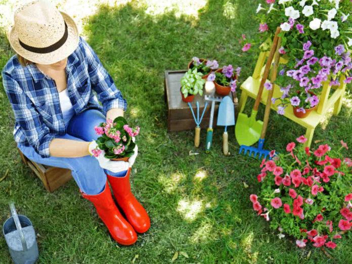 Минералка и цветы