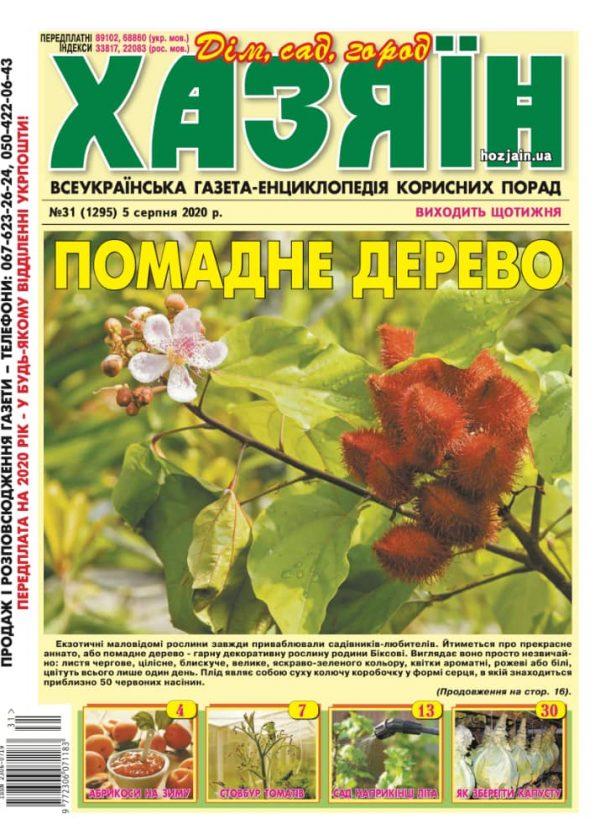 """Хазяїн"" №31/2020"