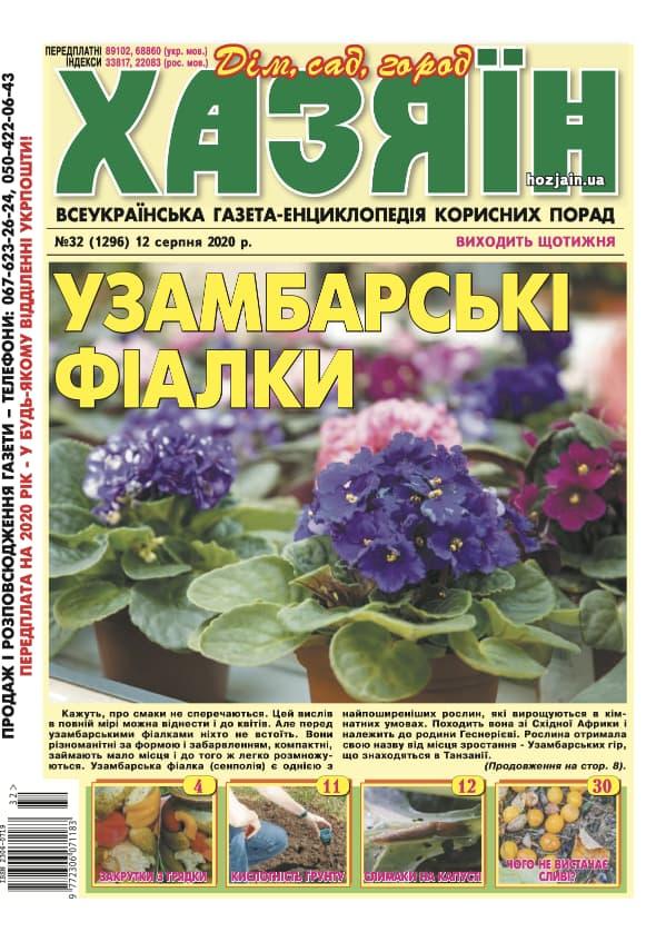 """Хазяїн"" №32/2020"