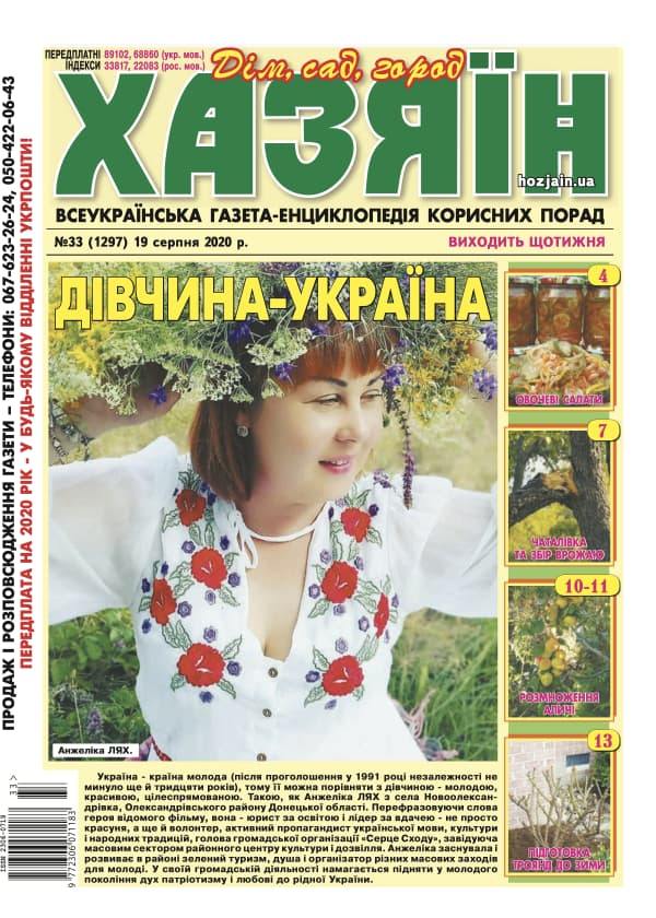 """Хазяїн"" №33/2020"