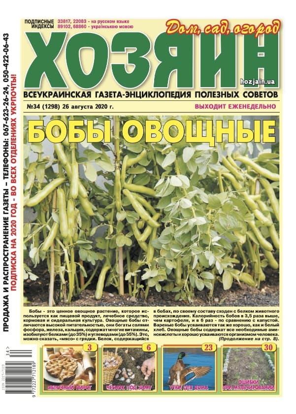 """Хозяин"" №34/2020"