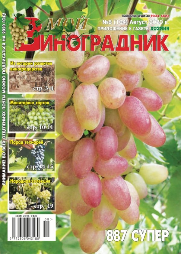 Мой виноградник, №8 2020