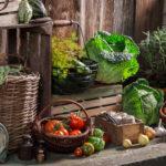 Подземный огород или урожай из погреба